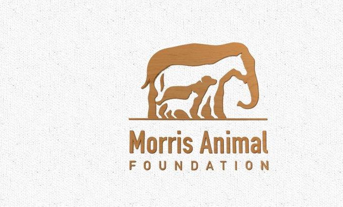 Morris Animal Hospital Award