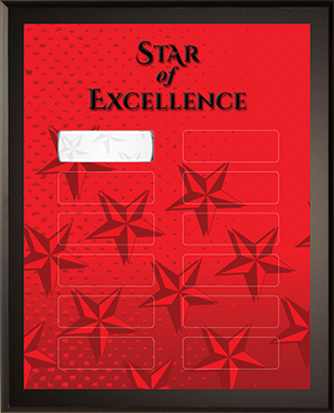 Star of Excellence